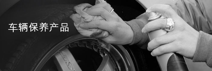 Passenger - Products - Maintenace